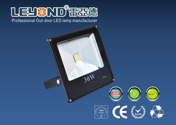 ประเทศจีน 30 Watt Pure White Outdoor LED Flood Lights Fixtures / LED Yard Flood Lights With Black Shell โรงงาน